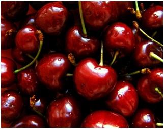 Makanan untuk Mencegah dan Mengobati Asam Urat